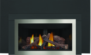 gas fireplace inserts - Napoleon Fireplaces